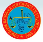 logo-cneps